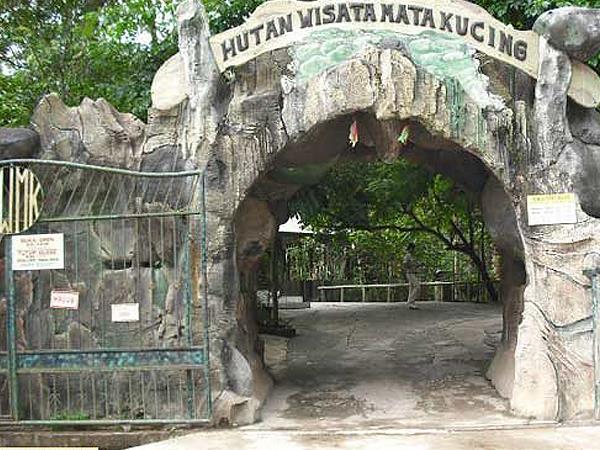 Hutan Wisata Mata Kucing Batam Zest Harbour Bay, Batam