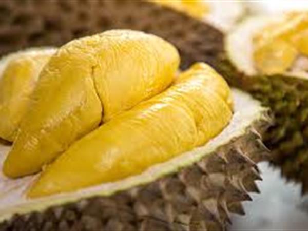 Central of Durian Street Vendors Kalibata Swiss-Belresidences Kalibata