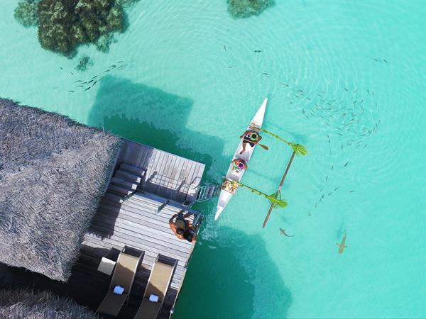 Petit Déjeuner Romantique «par Pirogue Tahitienne» Tikehau Pearl Beach Resort