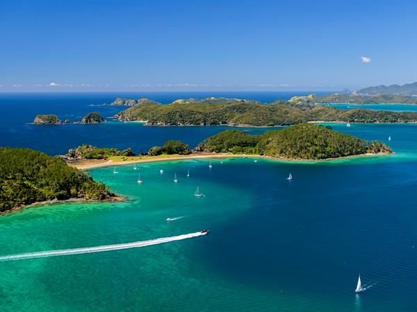 MOTUAROHIA (ROBERTON ISLAND TRACK) Paihia Top 10