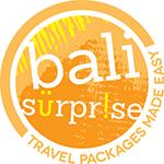Bali Surprise Transfer