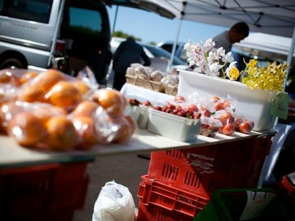 Waihi Beach Produce Market