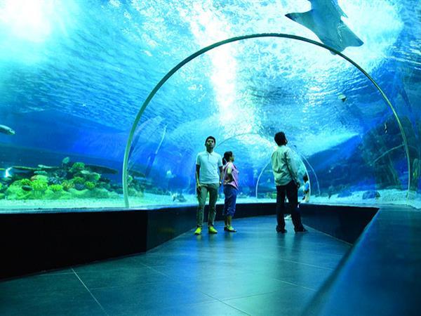 Manila Ocean Park Swiss-Belhotel Blulane