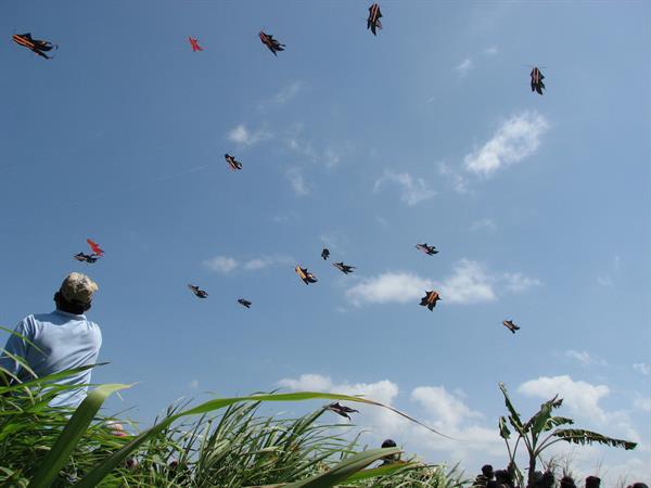 International Kite Festival Swiss-Belresort Watu Jimbar