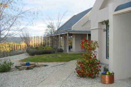 Hawkdun Rise Vineyard & Accommodation
