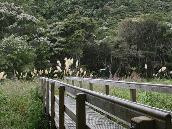 Tarawera Trail Alert Totally Tarawera
