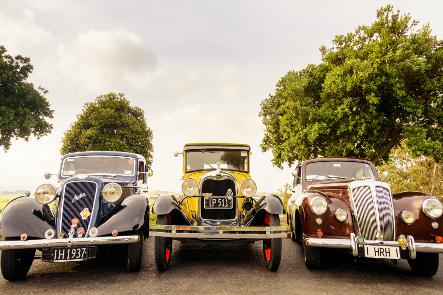 Napier - Classic Cars No 8 Tours for NZ Shore Excursions