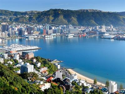 Wellington - Highlights