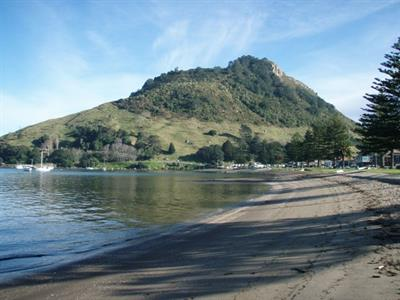 inactive NZ Shore Excursions