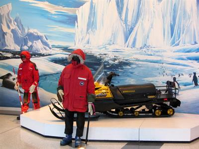 Christchurch Sightseeing with Antarctic Centre