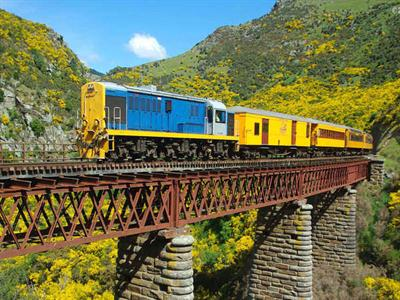 Tour 3 - City Sights plus Taieri Gorge Heritage Train Journey