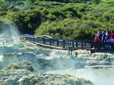 Rotorua - Te Puia & Hells Gate NZ Shore Excursions