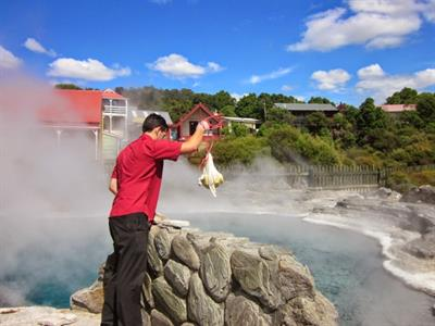 Rotorua - Te Puia & Rainbow Springs