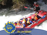 Be into WIN