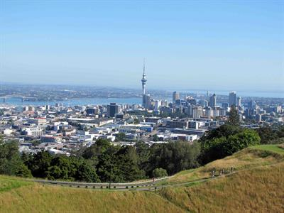Auckland - Afternoon Highlights No 8 Tours for NZ Shore Excursions