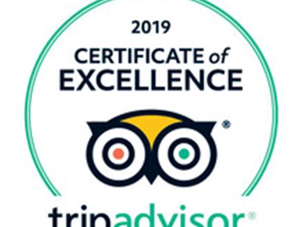 Tripadvisor Award 2019 Coromandel Adventures
