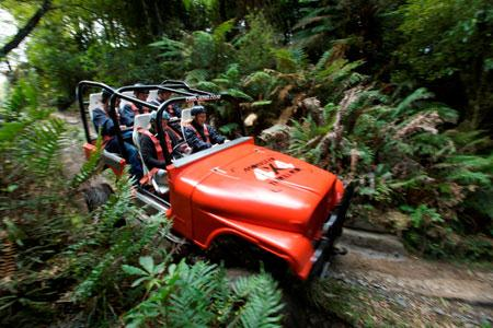 The Adrenaline Overdose Package