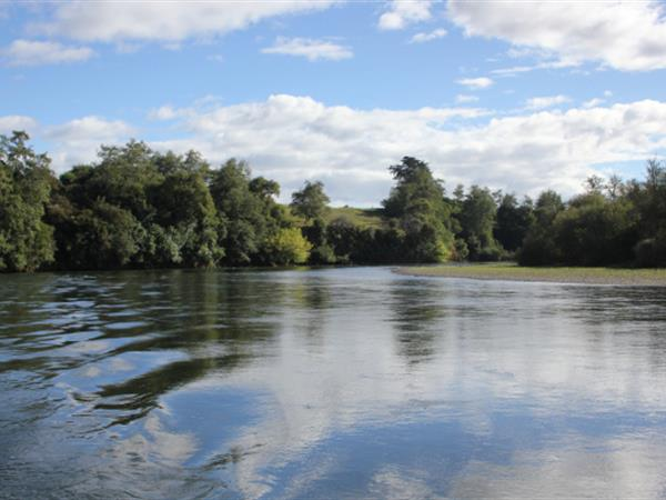 Half Day Pass From Hamilton Gardens