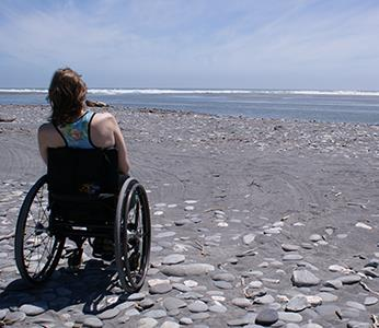 Accessible Dunedin Tours