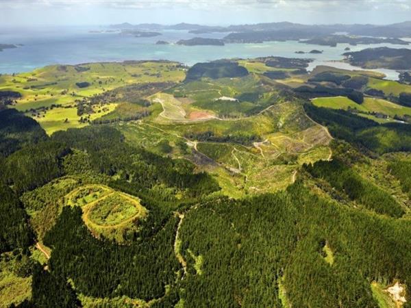 Waitangi Mountain Bike Park (WMBP) Paihia Top 10