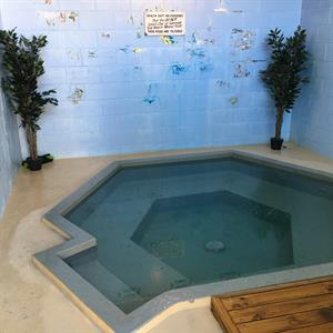 Private Indoor Spa Pool