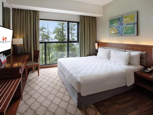 Deluxe Queen Room