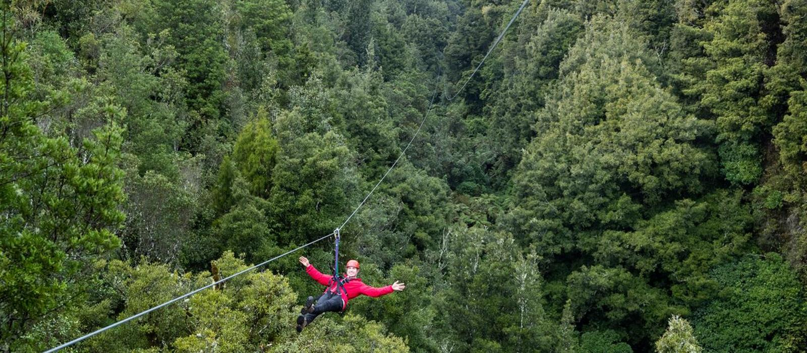 Image result for rotorua canopy tours