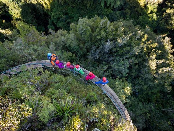 Rotorua Canopy Tours Waitomo Adventure Centre