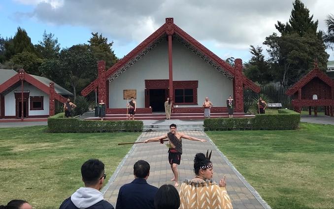 6hr Rotorua Thermal  Tour Wicked Wanders