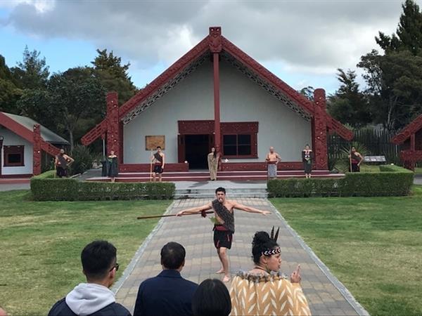 6hr Rotorua Thermal Wonderland Tour Wicked Wanders