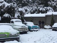 Twin Cabin Tongariro Holiday Park