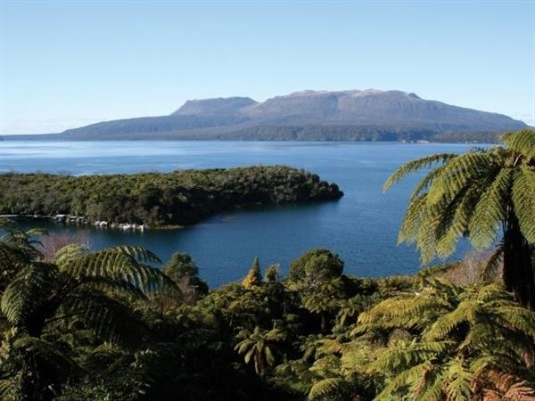 Beautiful Lakes to Visit in Rotorua