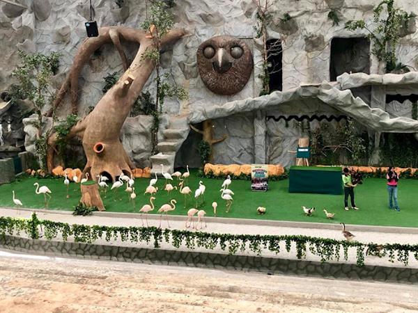 Bukit Gambang Safari Park Swiss-Belhotel Kuantan