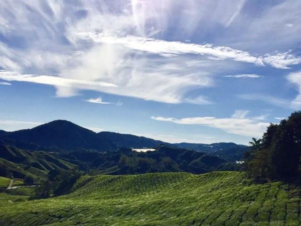 Hutan Rekreasi Bukit Pelindung Swiss-Belhotel Kuantan