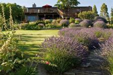 Grapeview Bed and Breakfast, Bannockburn