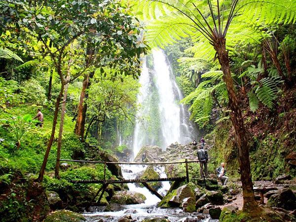 Gorjogan Sewu Waterfall Swiss-Belinn Saripetojo
