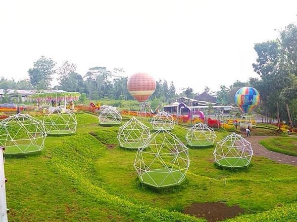 Alamanda Jogja Flower Garden Swiss-Belboutique Yogyakarta