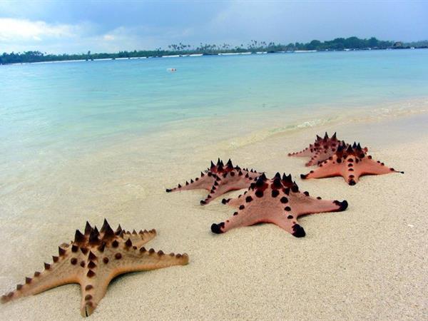 Pulau Pasir Swiss-Belresort Belitung