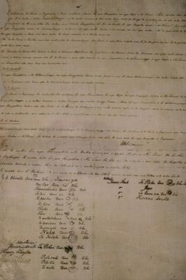 Treaty of Waitangi - Tauranga HC201