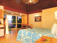 Deluxe Beachfront Suite