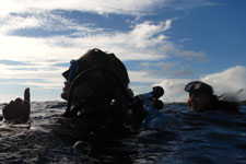 Pacific Divers