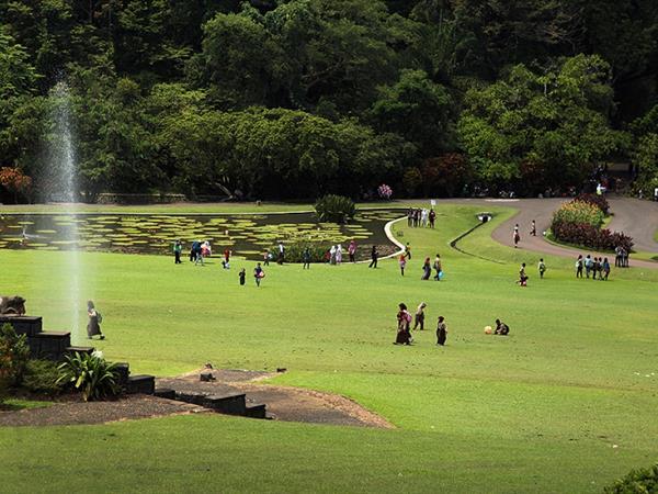 Kebun Raya Bogor Swiss-Belinn Bogor