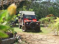 Island Discovery Tour Atiu Safari & Fishing Tours