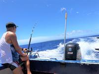Fishing Charter - Around Atiu Atiu Safari & Fishing Tours