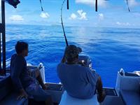 Full Day Fishing Charter (Shared Charter) Marguerite Cruises