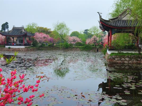 Liyuan Garden Swiss-Belhotel Liyuan, Wuxi