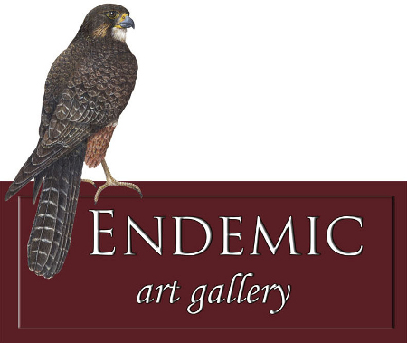 Endemic Art Gallery