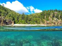 Central Explorer – Hook and Hayman Islands