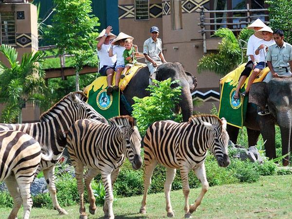 Bali Safari and Marine Park Swiss-Belhotel Rainforest