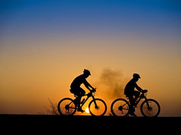 Guided Cycle Tour Swiss-Belboutique Napier